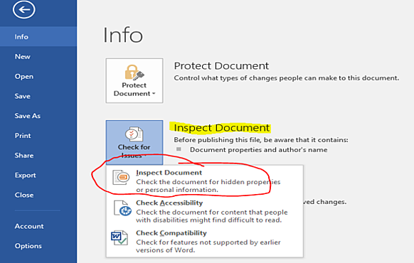 Emily Arnold MS Power User Blog image 6-Inspect Document