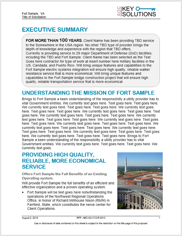 Executive Summary  Sample Snap Shot-1